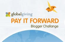 Pay it Forward Blogger Challenge