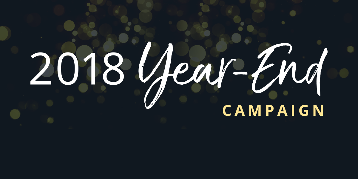 2018 Year-End Campaign