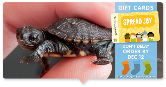 GlobalGiving Gift Cards - Free Shipping