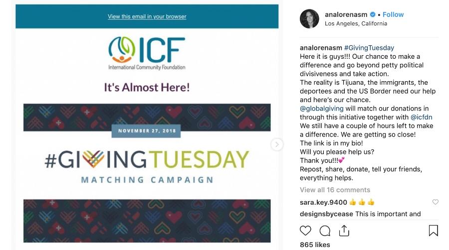 Nonprofit Instagram Case Study