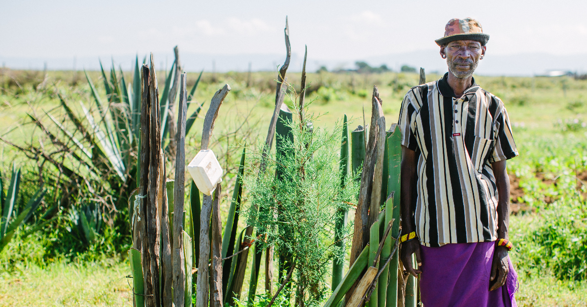 Building food security in Kenya