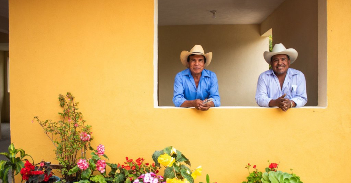 Two men standing in a window opening of a yellow building with flowers on the ground in front of them