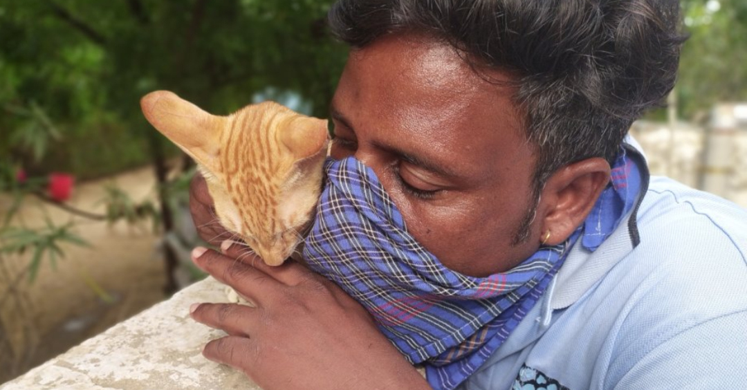 man with a rescue cat. nonprofit covid solutions