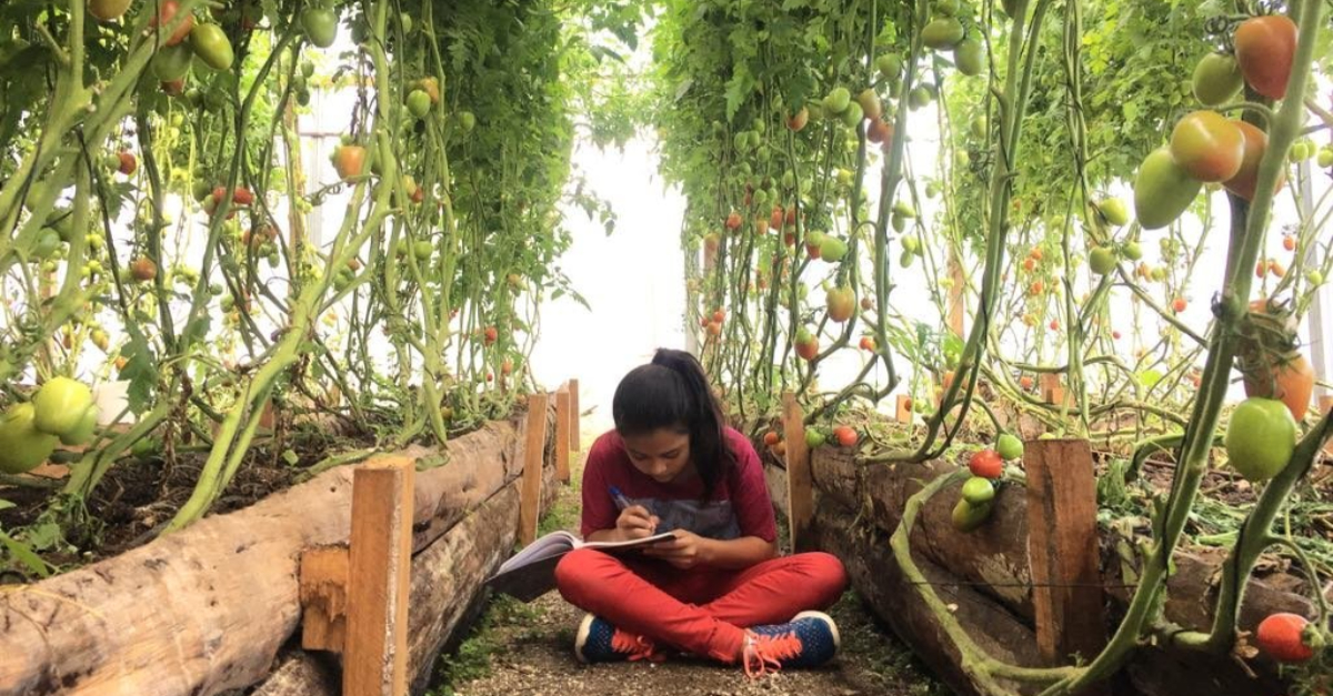 girl studying in an outdoor garden. nonprofit solutions.