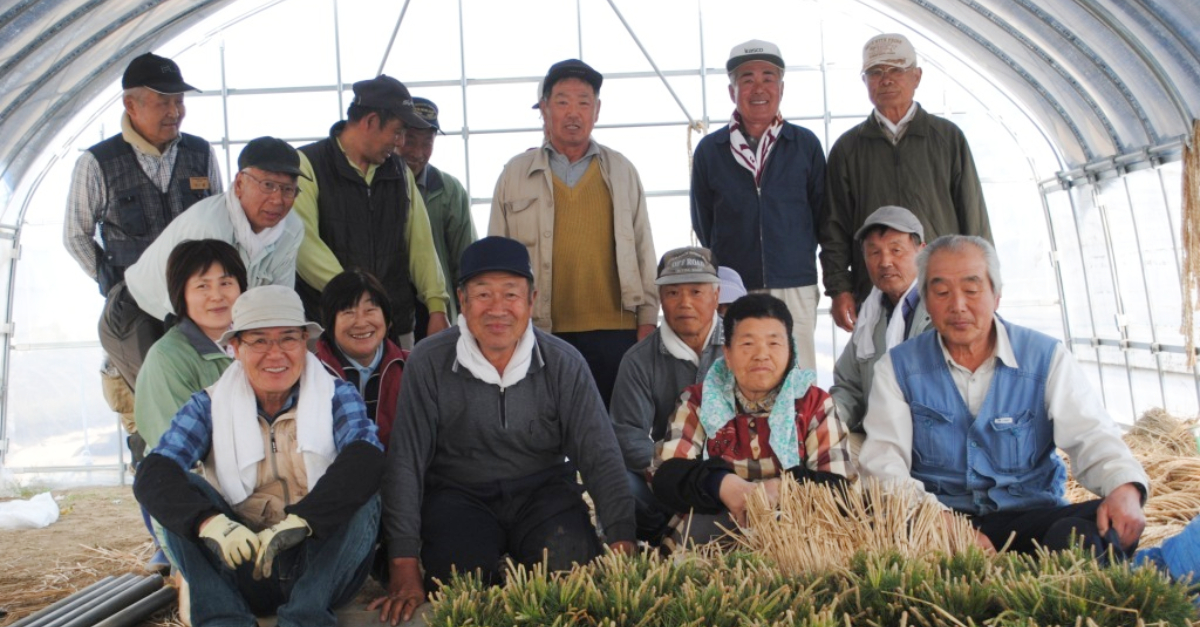Survivors of the 2011 Tohoku earthquake and tsunami sitting together in the greenhouse.