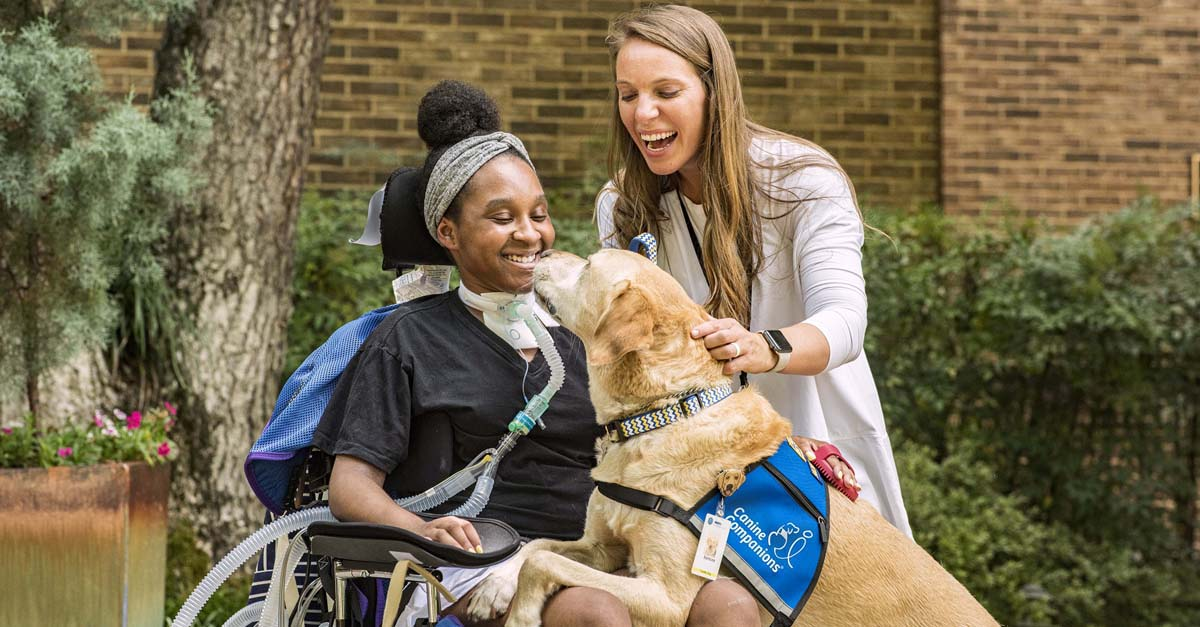A dog greets companion in wheelchair. Dogs with jobs making the world a better place