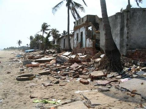 Skills Training for 250 Tsunami-Affected Women