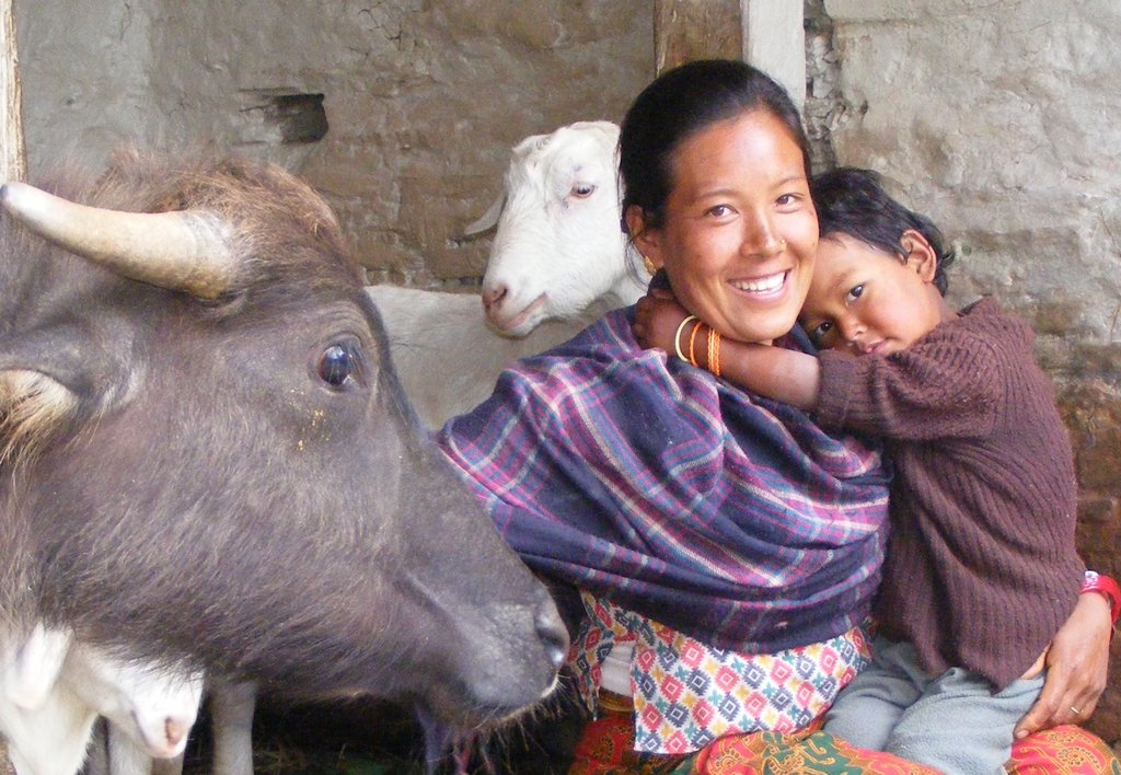 Support 300 Safe Births in the Nepal Himalaya