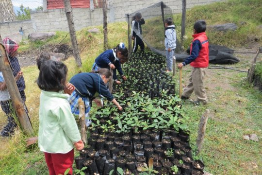 Kids work on their nursery at A.L. Mateos School