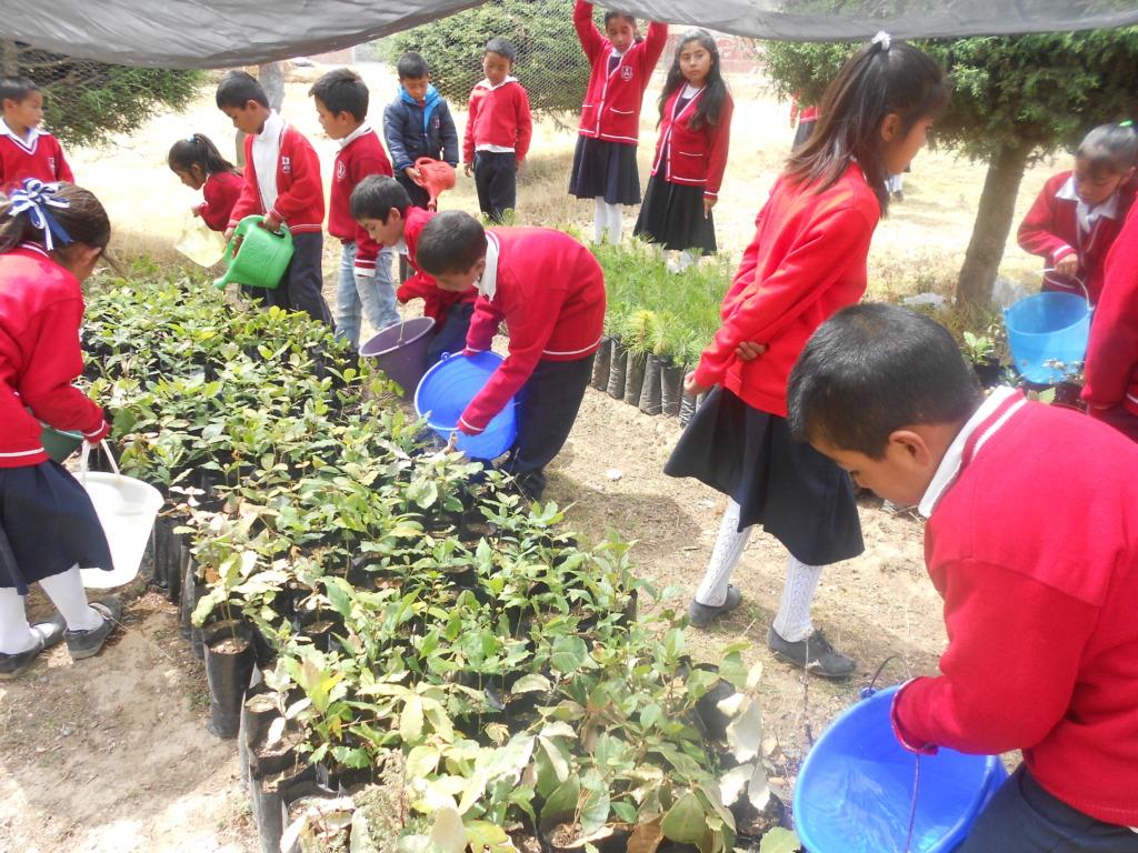 School Children Working at C.Morales Nursery