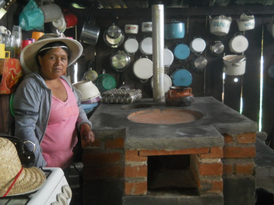 Woman by her brand new fuel-efficient stove