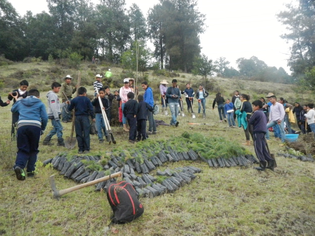 Three communities were involved in tree-planting!