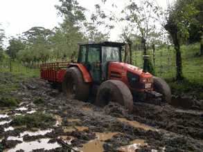 Tractor hauling to planting site, he got stuck!