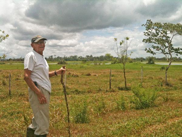 Alvaro Jenkins, Reforesting the Deforestation