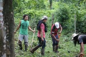 Planting at Ebert Fonseca's, Maleku Reserve