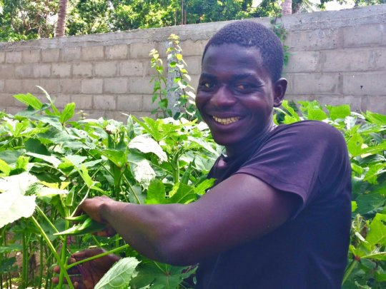 Proud of his okra crop at MDG's Bango property