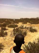 Young talibe fascinated by his first African oryx