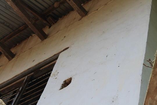 Khandbari Orphanage building