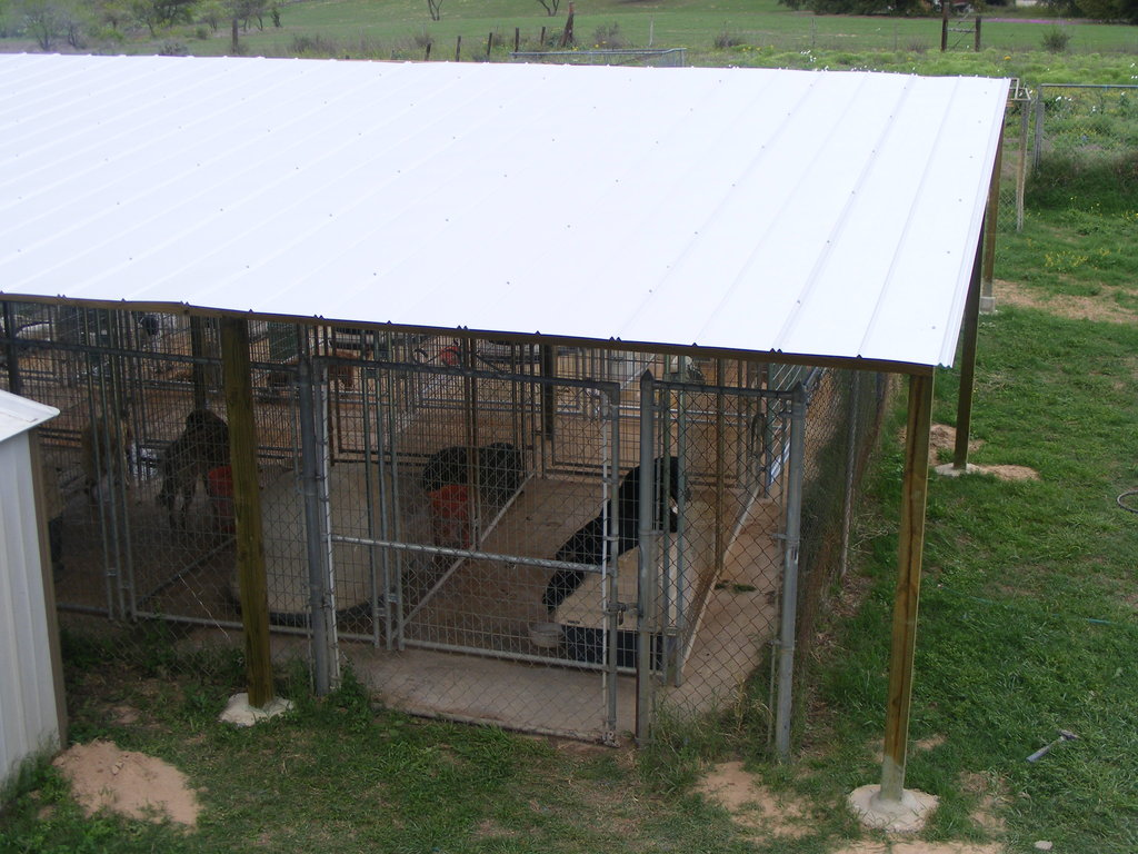 Complete our roof and feed homeless dogs