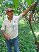 Angel, a cacao farmer in Colombia