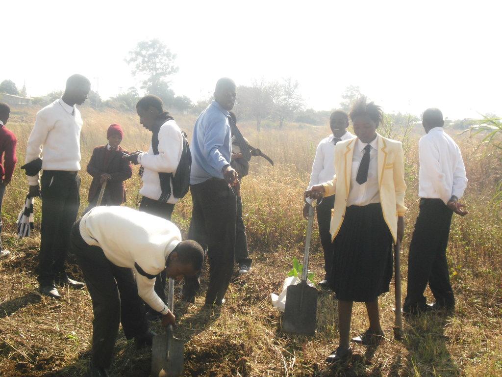 Train 320 Zimbabwean students on social innovation