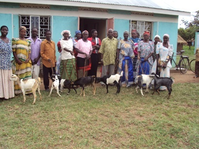 Second round of goats for child headed households