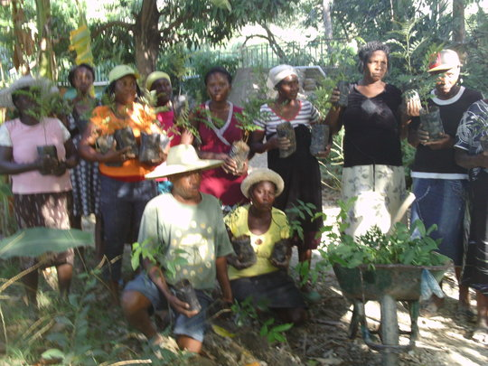 Bethel community tree planting mobilization