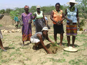 Rural women's group reforesting their land