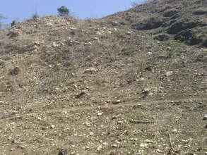 Degraded Land in Bethel