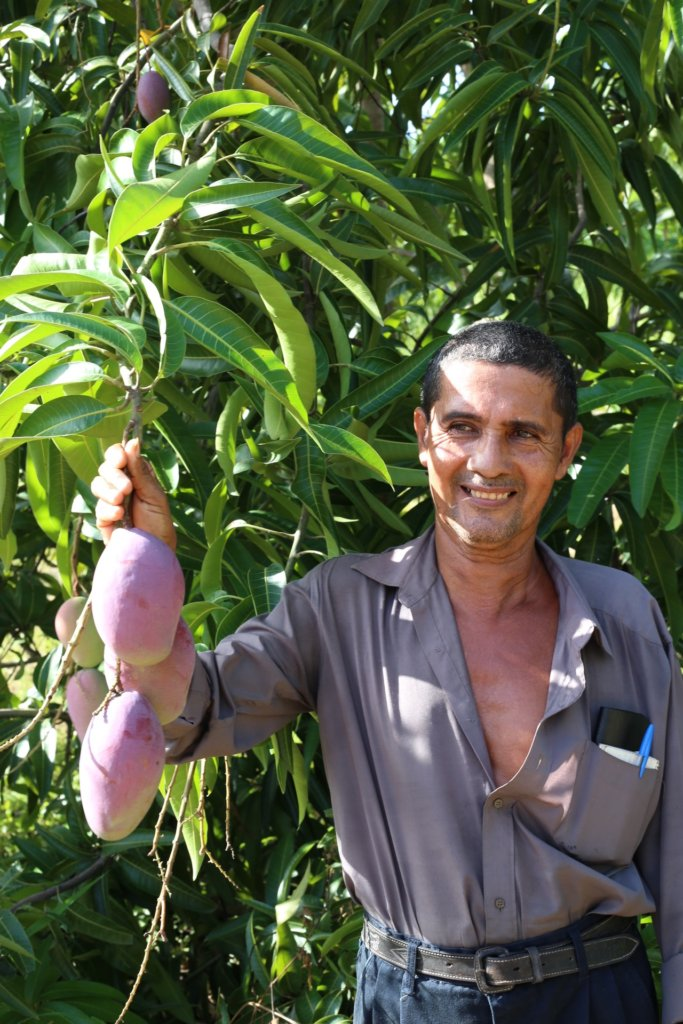 Jose with his mangos