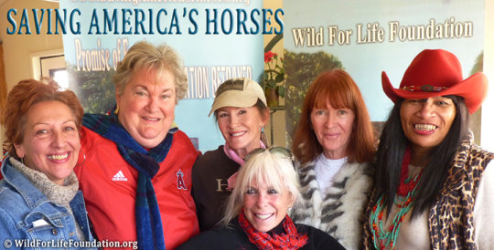 Saving America's Horses Team members