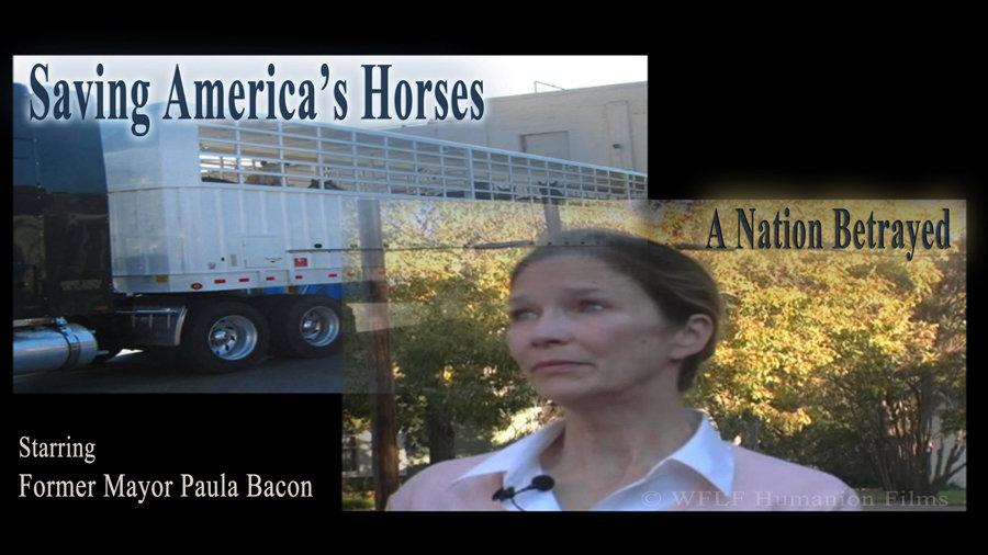 Saving America's Horses Educational Project