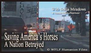 Saving America's Horses Production still