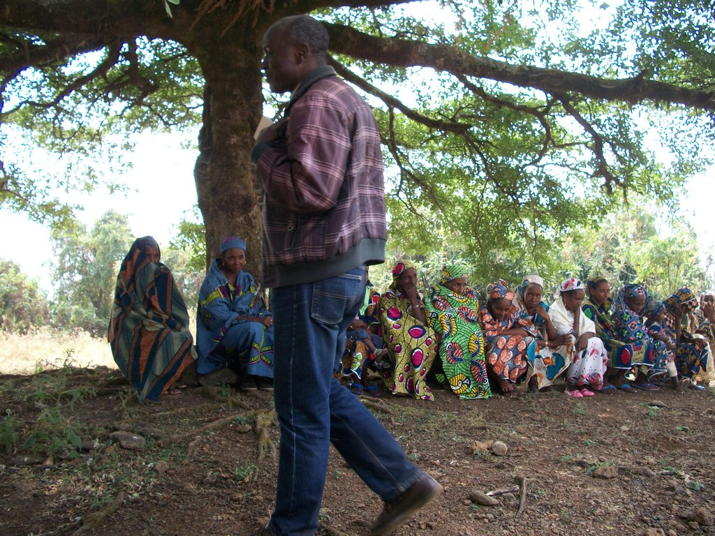 Safe Drinking Water for 5000 Villagers in Cameroon