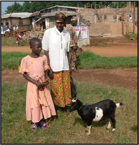 Send 20 Orphans to School-Donate Goats in Cameroon