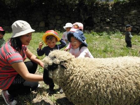 visit to a farm