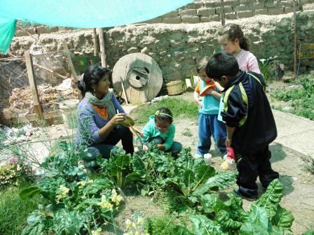 children harvesting beeds in our garden