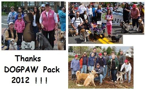 Thanks - Volunteers