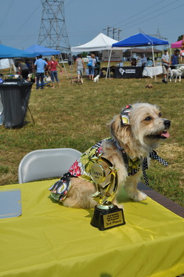 K9 Pageant Winner