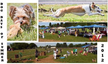 Dog Days of Summer 2012