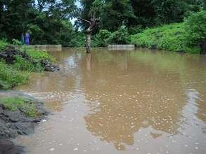 Jhambulpada Check Dam in its 2nd Year
