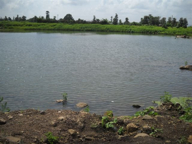 Kharset Pond - Being Developed for Pisciculture