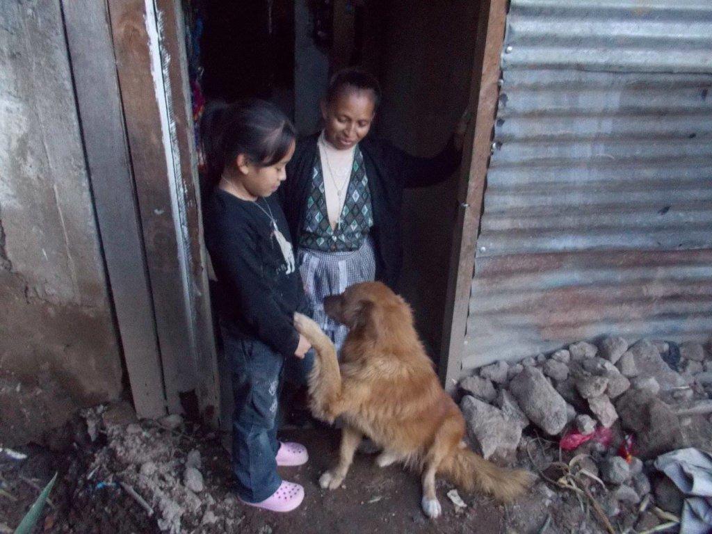 Dona Sara loved dogs!