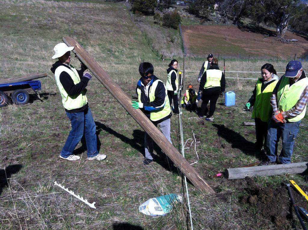 Volunteers securing the perimeter fence posts