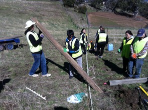 Volunteers securing the perimeter fence posts