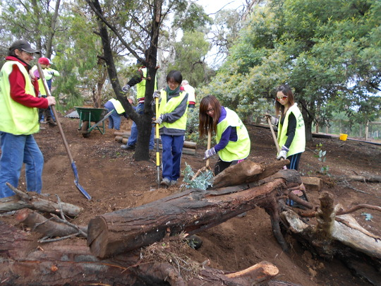 Volunteers building the digging mound