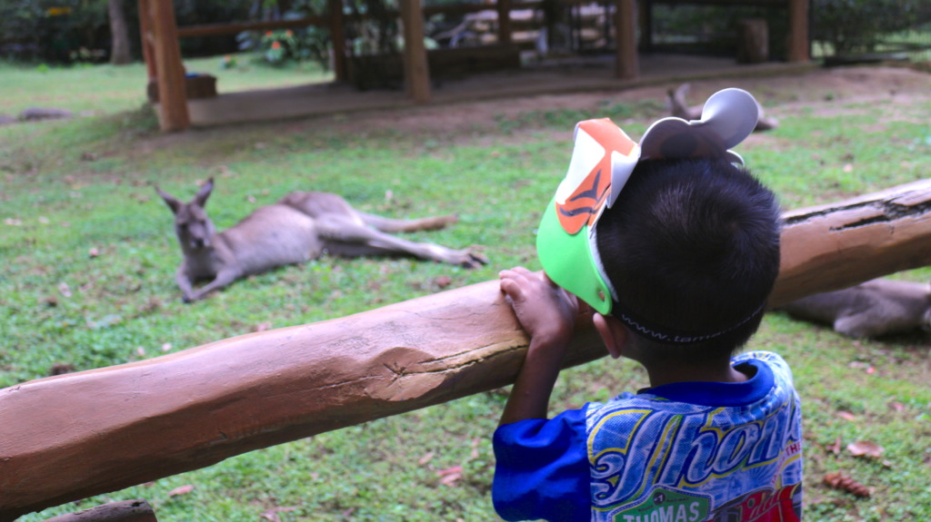 Teguh on his 1st & last trip to the zoo