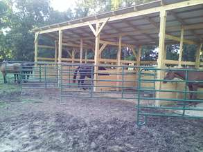 Sunkissed Acres shelter 1 under construction