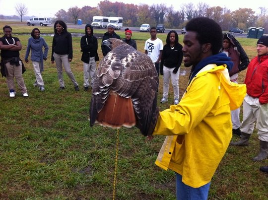 Changing Lives with Birds of Prey