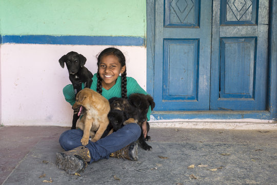 Help Street Dogs in Dharamsala and Save Lives!